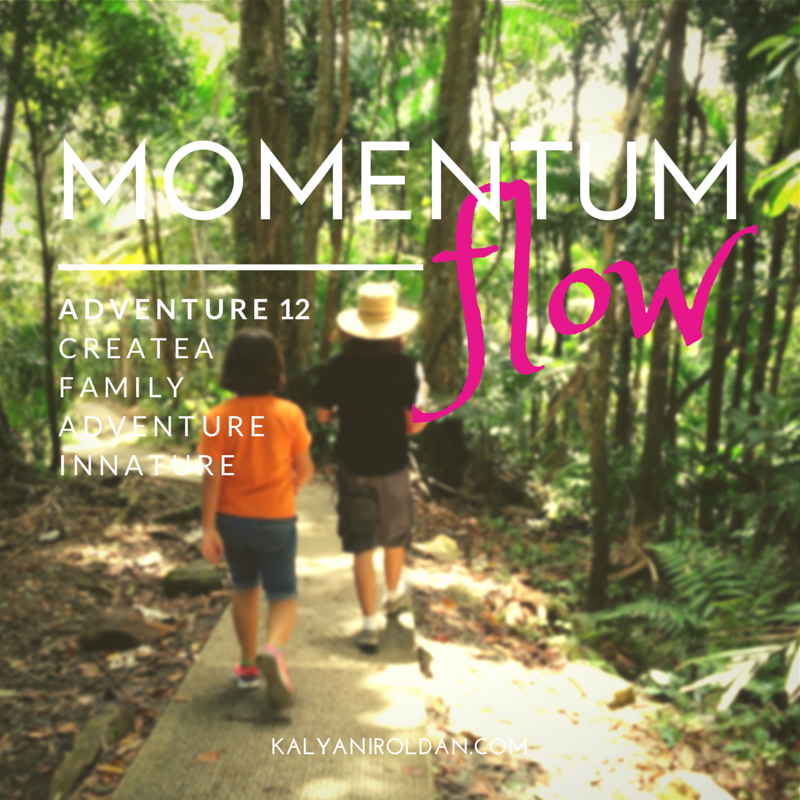 Momentum Flow Adventure 12